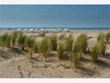 Linda Bay - 621 :: Mar de las pampas :: Fabián Estanga :: Negocios inmobiliarios