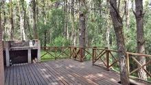 Nuestro Bosque :: Mar de las pampas :: Fabián Estanga :: Negocios inmobiliarios